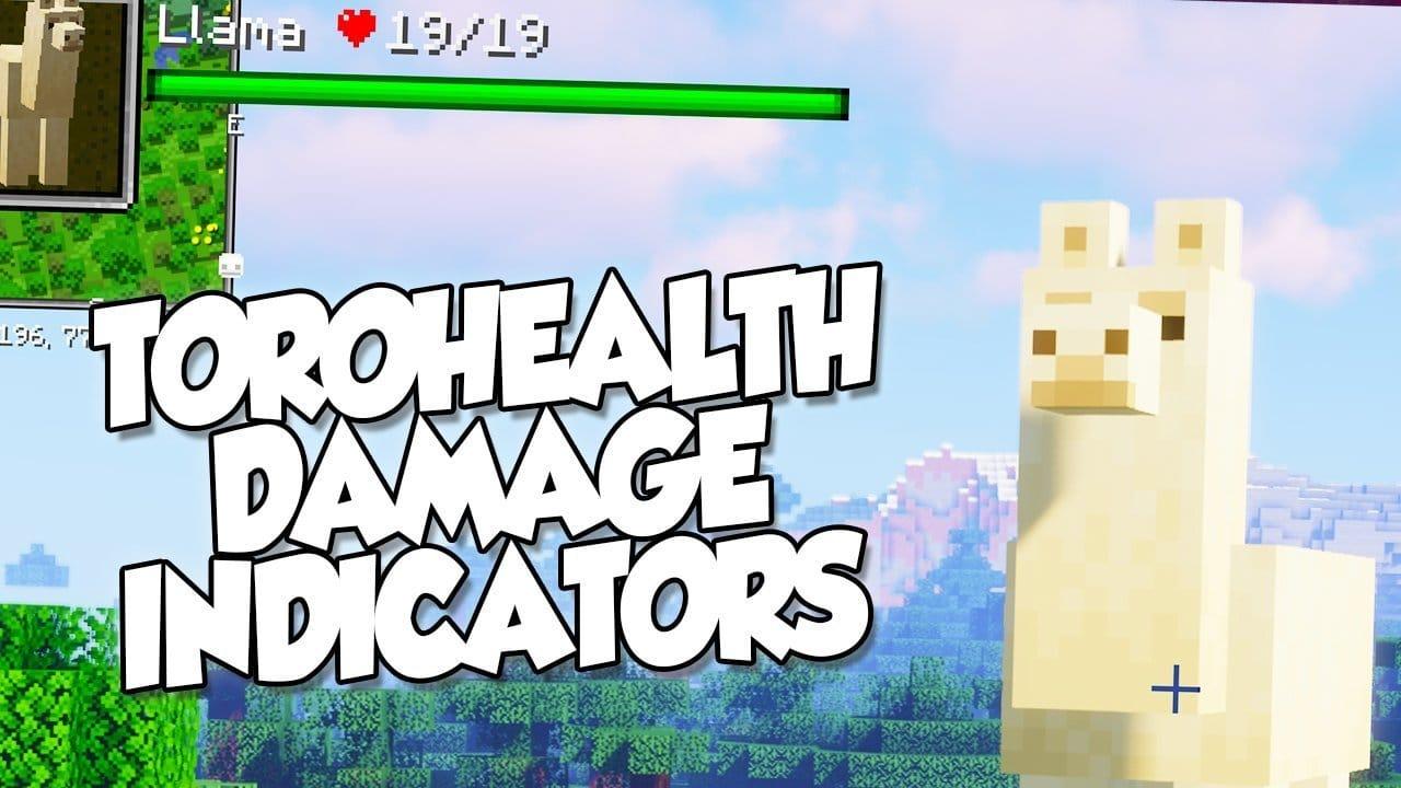 【 Torohealth Damage Indicators MOD 】para Minecraft 1.16.3