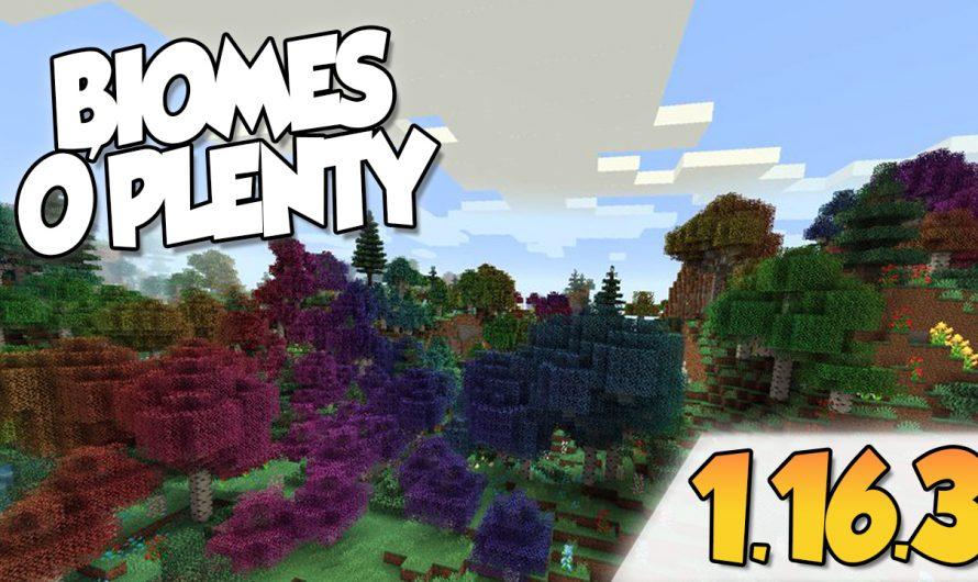 【 Biomes O'plenty MOD 】para Minecraft 1.16.3, 1.16.2 y 1.16.1