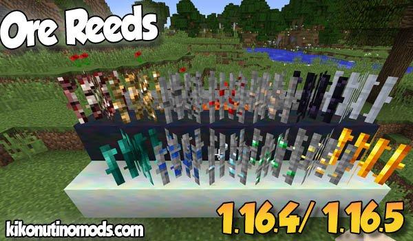 【Ore Reeds MOD】 para Minecraft 1.16.5 y 1.16.4