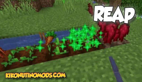 Reap Mod para Minecraft 1.16.5 y 1.12.2