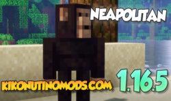 Neapolitan Mod para Minecraft 1.16.5